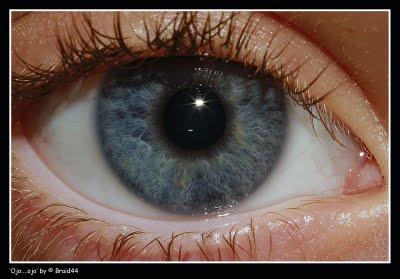 20130817164956-ojo-ojo.jpg